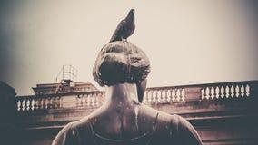 Περιστέρι στο άγαλμα γυναικών Στοκ Εικόνες