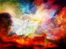 Περιστέρι στο κοσμικό διάστημα Ζωγραφική και γραφικό σχέδιο Γραφική επίδραση ελεύθερη απεικόνιση δικαιώματος