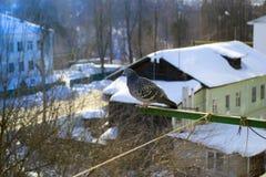 Περιστέρι στο μπαλκόνι Στοκ Φωτογραφία