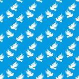 Περιστέρι της ειρήνης Περιστέρι του διανύσματος ειρήνης σχοινί απεικόνισης άνευ ρ&a Στοκ εικόνες με δικαίωμα ελεύθερης χρήσης