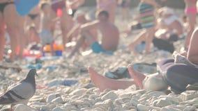 Περιστασιακοί άνθρωποι στο υπόβαθρο της παραλίας το καλοκαίρι στις διακοπές απόθεμα βίντεο