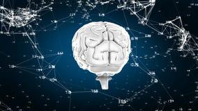 Περιστρεφόμενος εγκέφαλος με τις συνδέσεις δικτύων ελεύθερη απεικόνιση δικαιώματος