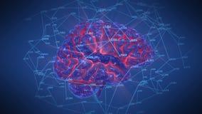 Περιστροφή δικτύων εγκεφάλου απεικόνιση αποθεμάτων