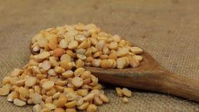 Περιστροφή, σωροί των ξηρών σιταριών μπιζελιών, που μειώνεται από ένα ξύλινο κουτάλι burlap απόθεμα βίντεο