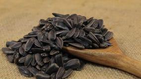 Περιστροφή, σωροί των σπόρων ηλίανθων, που μειώνεται από ένα ξύλινο κουτάλι burlap απόθεμα βίντεο