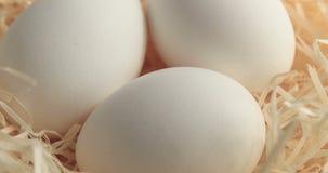 Περιστροφή του άσπρου αυγού απόθεμα βίντεο