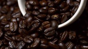 Περιστροφή των φασολιών καφέ με το φλυτζάνι καφέ απόθεμα βίντεο