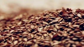 Περιστροφή flaxseeds απόθεμα βίντεο