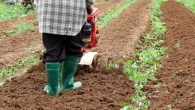 Περιστροφικός καλλιεργητής που εργάζεται στον κήπο φιλμ μικρού μήκους