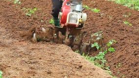 Περιστροφικός καλλιεργητής που εργάζεται στον κήπο απόθεμα βίντεο