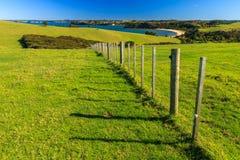 Περιφερειακό πάρκο Shakespear, περιοχή του Ώκλαντ, της Νέας Ζηλανδίας Στοκ εικόνα με δικαίωμα ελεύθερης χρήσης