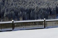 περιφράξτε τα χιονώδη δέντρ&al Στοκ εικόνες με δικαίωμα ελεύθερης χρήσης