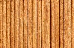 περιφράξτε τους θερινούς ηλίανθους λιβαδιών ξύλινους Στοκ Εικόνα