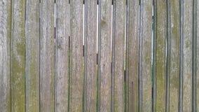 περιφράξτε τους θερινούς ηλίανθους λιβαδιών ξύλινους Ξύλινη ανασκόπηση σύσταση Στοκ φωτογραφία με δικαίωμα ελεύθερης χρήσης