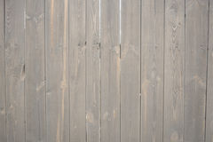 περιφράξτε τους θερινούς ηλίανθους λιβαδιών ξύλινους Στοκ εικόνα με δικαίωμα ελεύθερης χρήσης