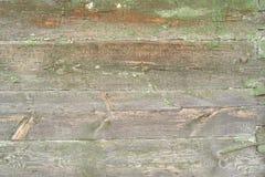 περιφράξτε τους θερινούς ηλίανθους λιβαδιών ξύλινους Στοκ Φωτογραφίες