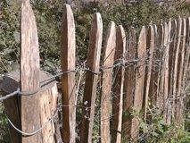 περιφράξτε τους θερινούς ηλίανθους λιβαδιών ξύλινους Στοκ φωτογραφίες με δικαίωμα ελεύθερης χρήσης