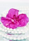 Περιδέραιο λουλουδιών και μαργαριταριών Στοκ φωτογραφίες με δικαίωμα ελεύθερης χρήσης