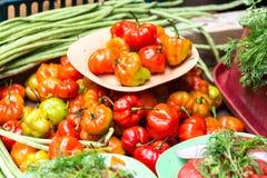 Περουβιανά πιπέρια τσίλι Rocoto στοκ φωτογραφίες