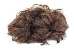 περούκα στοκ εικόνες με δικαίωμα ελεύθερης χρήσης