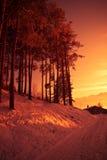 περπάτημα ηλιοβασιλέματ&omicr Στοκ Εικόνα