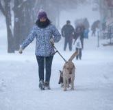 Περπάτημα μέσω της χιονοθύελλας Στοκ φωτογραφία με δικαίωμα ελεύθερης χρήσης