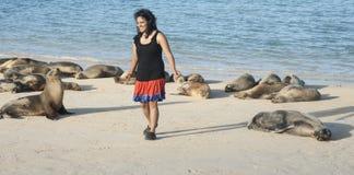 Περπάτημα με τα λιοντάρια θάλασσας. Στοκ Εικόνες