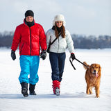 Περπάτημα με το σκυλί Στοκ Εικόνες