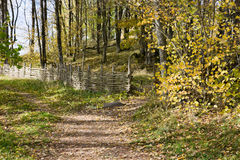 περπάτημα μονοπατιών Στοκ εικόνα με δικαίωμα ελεύθερης χρήσης