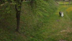 περπάτημα πάρκων νεόνυμφων ν&ups απόθεμα βίντεο