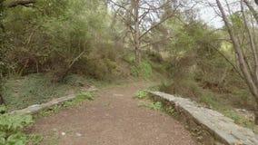 Περπάτημα πέρα από τη μεσαιωνική γέφυρα φιλμ μικρού μήκους