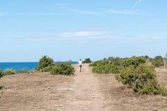 Περπάτημα σε ένα ξηρό τοπίο κατά μήκος της ακτής Στοκ Εικόνες