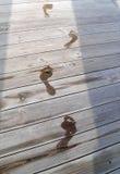 περπάτημα σκιών Στοκ Φωτογραφίες