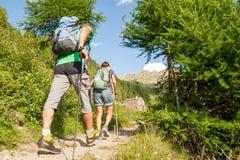 Περπάτημα στα ίχνη βουνών στοκ εικόνες