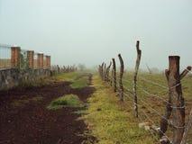 Περπάτημα στο αγρόκτημα με την ομίχλη Στοκ εικόνα με δικαίωμα ελεύθερης χρήσης