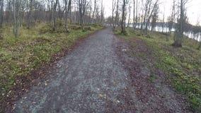 Περπάτημα στο δάσος φθινοπώρου στο ίχνος βρώμικων δρόμων φιλμ μικρού μήκους