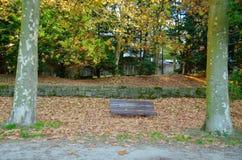Περπάτημα στο πάρκο Στοκ Φωτογραφίες