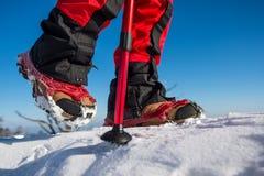 Περπάτημα στο χιόνι με τα παπούτσια χιονιού και τις ακίδες παπουτσιών το χειμώνα Στοκ φωτογραφία με δικαίωμα ελεύθερης χρήσης