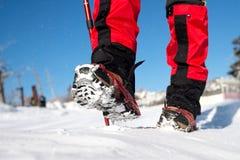 Περπάτημα στο χιόνι με τα παπούτσια χιονιού και τις ακίδες παπουτσιών το χειμώνα Στοκ Φωτογραφία