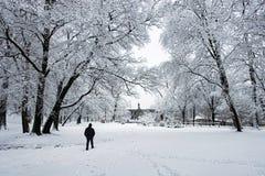 Περπάτημα στο χιόνι Χειμερινό τοπίο με το άτομο που περπατά μόνο σε ένα χιονώδες πάρκο προς το κέντρο της εικόνας στοκ εικόνες με δικαίωμα ελεύθερης χρήσης