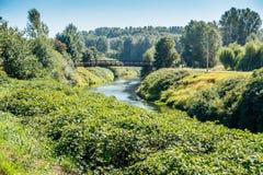 Περπάτημα της γέφυρας πέρα από τον πράσινο ποταμό Στοκ εικόνα με δικαίωμα ελεύθερης χρήσης