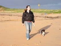 Περπάτημα του σκυλιού Στοκ εικόνα με δικαίωμα ελεύθερης χρήσης