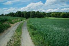 Περπάτημα το καλοκαίρι Στοκ φωτογραφία με δικαίωμα ελεύθερης χρήσης