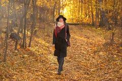 περπάτημα φθινοπώρου Στοκ εικόνα με δικαίωμα ελεύθερης χρήσης