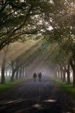 περπάτημα 3 πρωινού Στοκ εικόνες με δικαίωμα ελεύθερης χρήσης