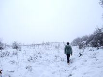 περπατήστε το χειμώνα Στοκ Εικόνα