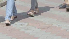 Περπατώντας άνθρωποι ομάδας και ένα σκυλί φιλμ μικρού μήκους