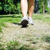 περπατώντας γυναίκα πάρκω&nu Στοκ Εικόνες
