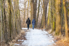 Περπατώντας ζεύγος το χειμώνα Στοκ εικόνες με δικαίωμα ελεύθερης χρήσης