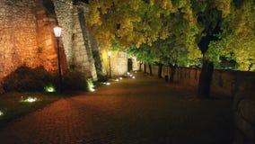 Περπατώντας κάτω από την πορεία πετρών τη νύχτα, πρώτη άποψη προσώπων απόθεμα βίντεο